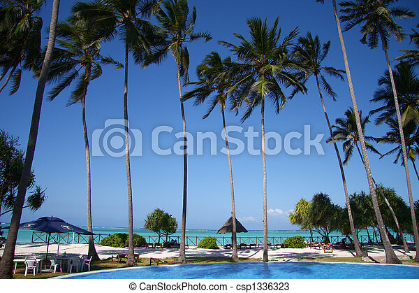 Palmas en el océano azul y playa - csp1336323