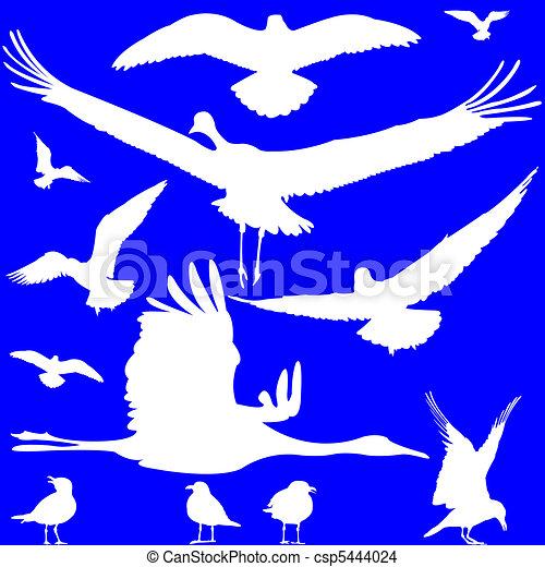 Pájaros blancos siluetas sobre el azul - csp5444024