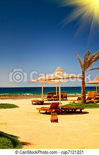 Palma, sombrilla y mar contra el cielo azul. - csp7121221