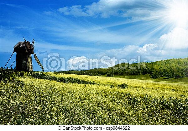azul, verão, colinas, verde, sob, céus - csp9844622