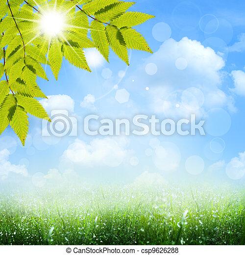 azul, verão, primavera, abstratos, fundos, sob, skies. - csp9626288
