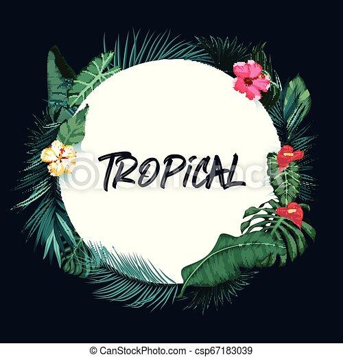 básico, tropicais, papel, fundo, rgb, redondo, floresta - csp67183039
