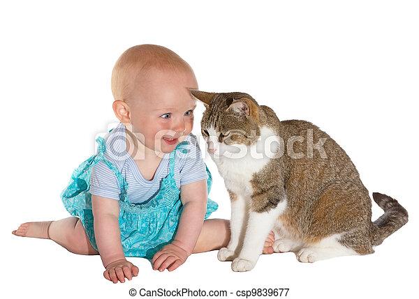 bébé, sourire, chat - csp9839677