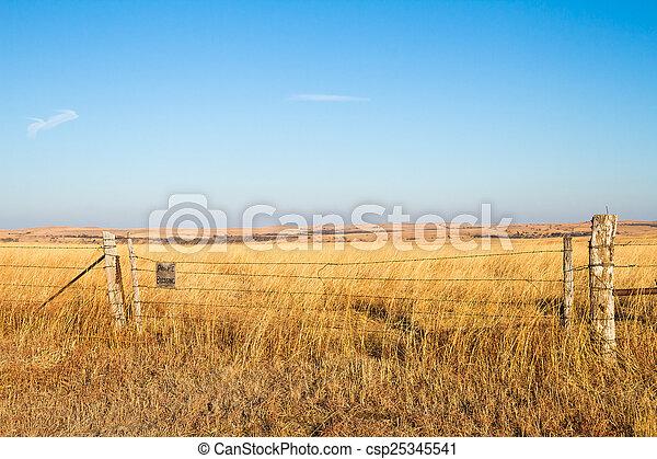 bénédiction, prairie - csp25345541