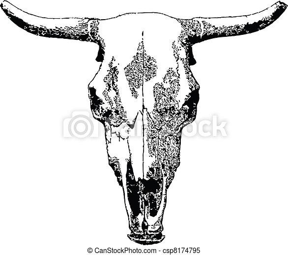 bétail, skull. - csp8174795