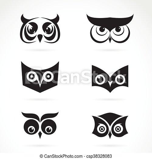 Búho Imagen Cara Fondo Vector Diseño Blanco Su Design