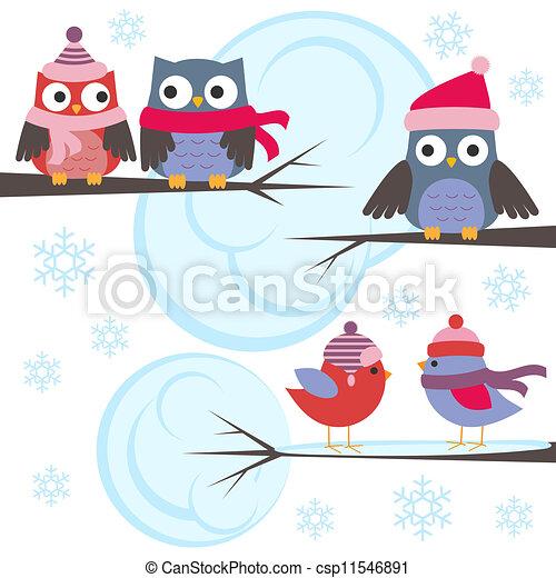 Mochuelos y pájaros en el bosque de invierno - csp11546891