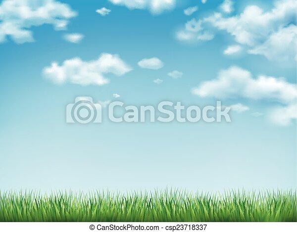 błękitne niebo, trawa, zielone pole - csp23718337