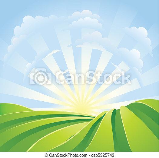 błękitny, idylliczny, pola, światło słoneczne, niebo, promienie, zielony - csp5325743