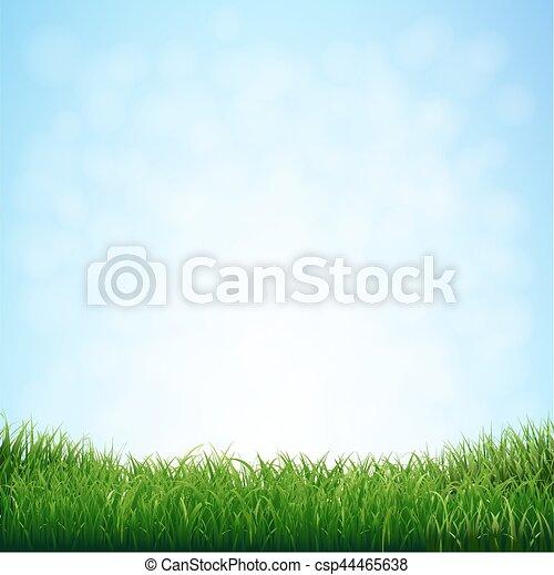 błękitny, trawa, niebo - csp44465638