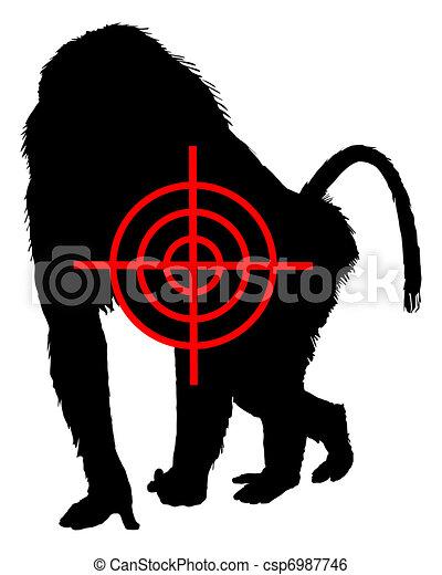 Baboon crosslines - csp6987746