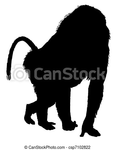Baboon silhouette - csp7102822