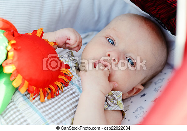 baby boy - csp22022034