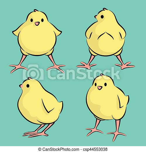 baby chicken vector illustration of a baby bird from four angles