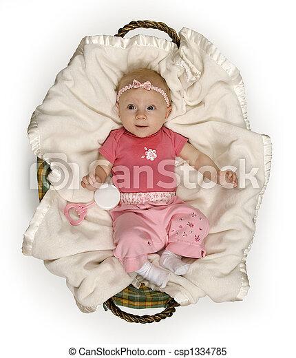 Baby in Basket - csp1334785