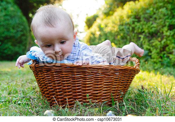 Baby in basket - csp10673031