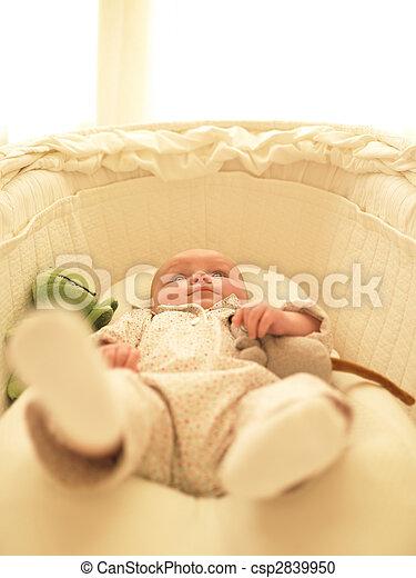 Baby in Bassinet - csp2839950