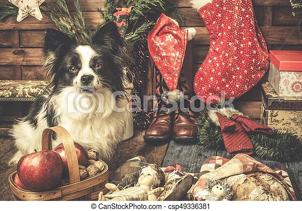 Baby Jesus And Cute Dog Xmas Christmas Cards Baby Jesus And Cute