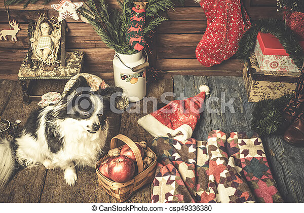 baby jesus and cute pet xmas card csp49336380 - Rustic Christmas Cards