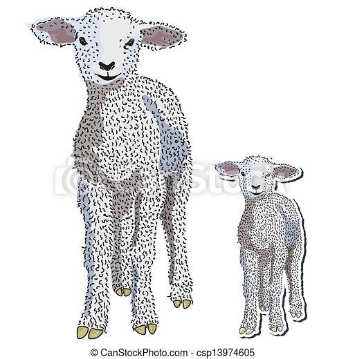 baby lamb vector hand drawn baby lamb standing rh canstockphoto com clip art lamborghini clip art lamb and cross