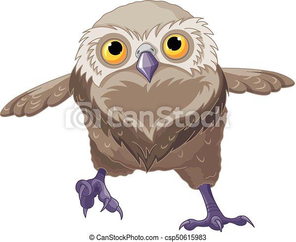 Baby Owl - csp50615983