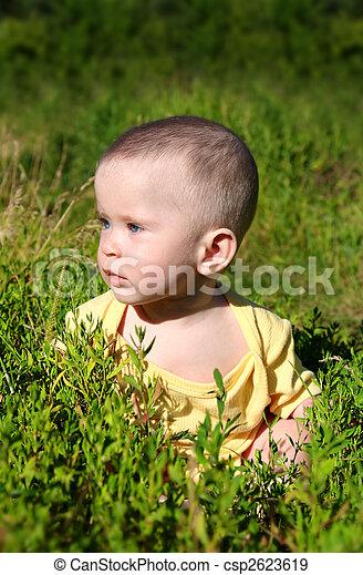 baby sitting in grass - csp2623619