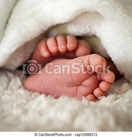 Baby toes - csp12496313