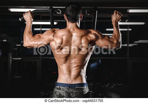 back muscle man s back male bodybuilder flexing his back
