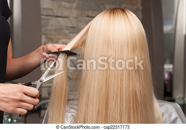 Back view of woman getting new haircut by hairdresser at parlor. hairdresser cutting client's hair in beauty salon - csp22317173
