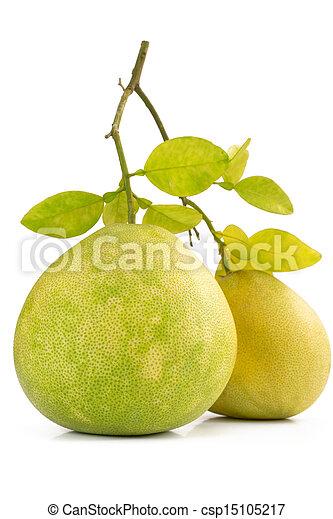 Dos frutas verdes de pomelo en blanco - csp15105217