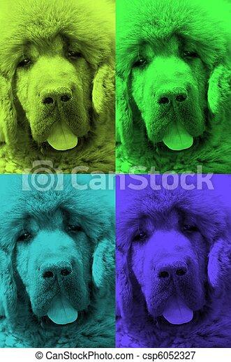 background dog 3 - csp6052327