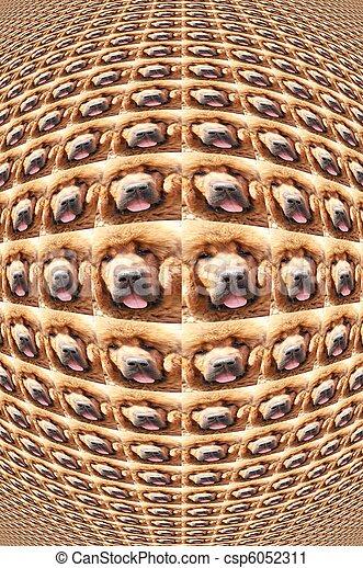 background dog 89 - csp6052311