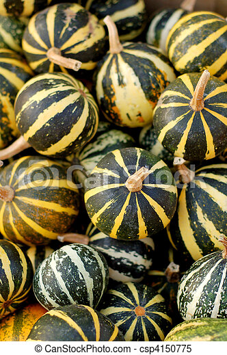 background from small pumpkins - csp4150775
