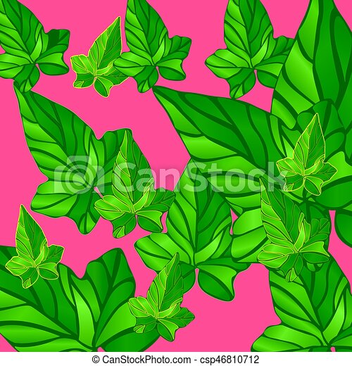 background Ivy leaves - csp46810712