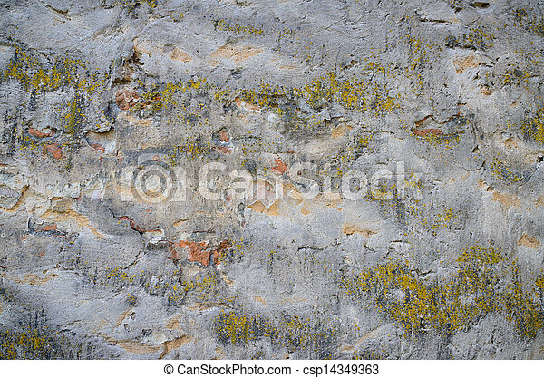 Background of a grungy gray cement wall with moss - csp14349363