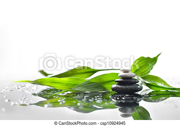 background of a spa with stones, and a sprig of green bamboo - csp10924945