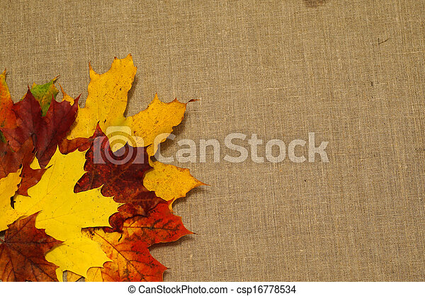 Background of autumn leaves on fabric - csp16778534
