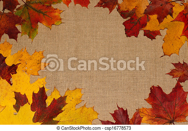 Background of autumn leaves - csp16778573