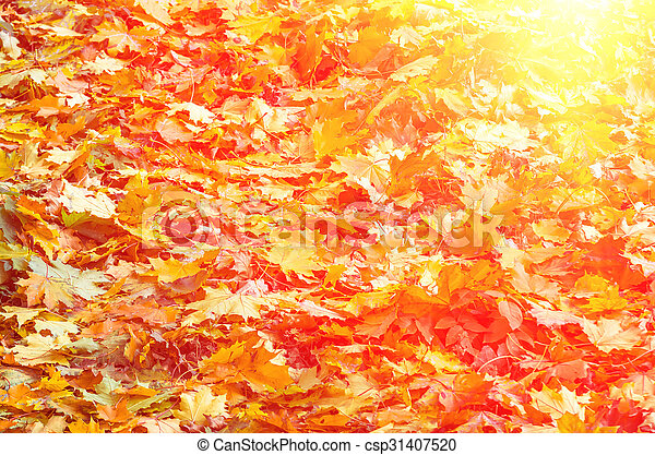 Background of autumn yellow green leaves - csp31407520
