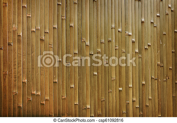 background of bamboo - csp61092816