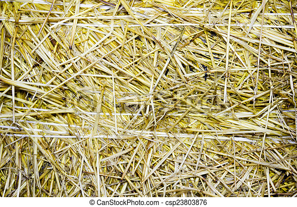 background of close-up bale of straw - csp23803876