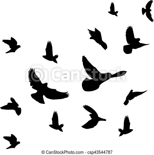 Background of flying birds flock - csp43544787