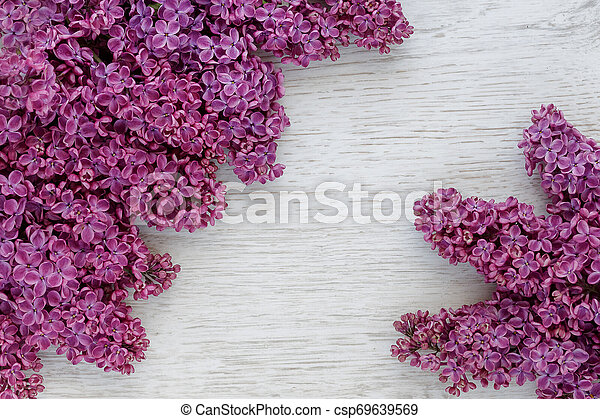 Background of lilac flowers on a wooden surface - csp69639569