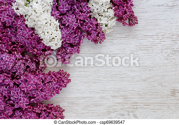 Background of lilac flowers on a wooden surface - csp69639547