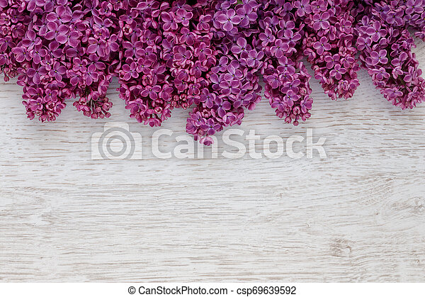 Background of lilac flowers on a wooden surface - csp69639592