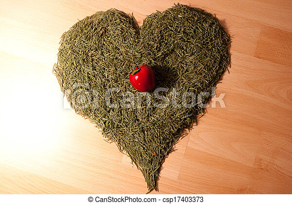 background of the Christmas tree needles in the shape of hearts and apples lying on the floor - csp17403373