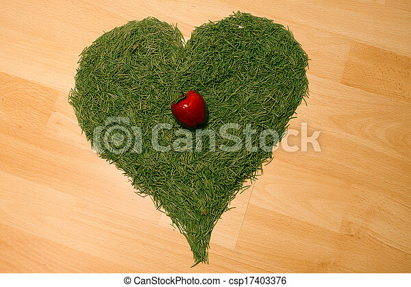 background of the Christmas tree needles in the shape of hearts and apples lying on the floor - csp17403376
