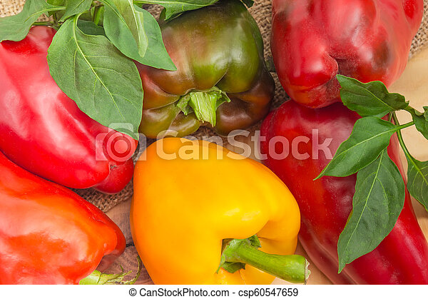 Background of the varicolored bell peppers with leaves - csp60547659
