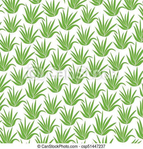background pattern with aloe plant icons - csp51447237