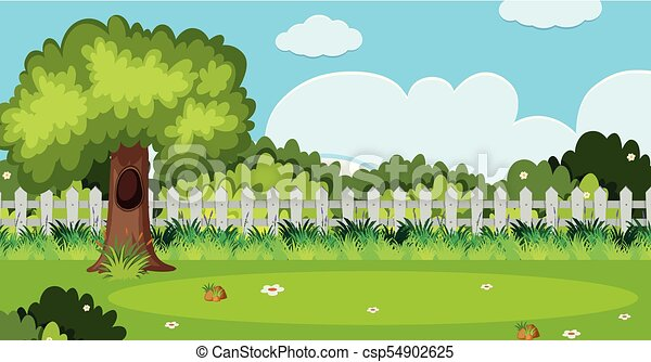 Background Scene With Tree And White Fence In Garden   Csp54902625